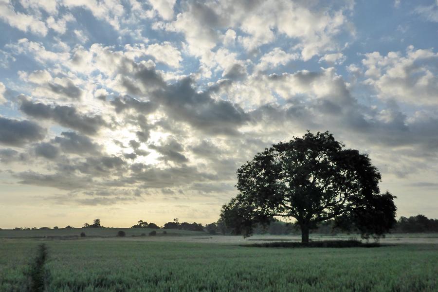 Lincolnshire, England.